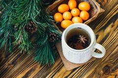 Les branches de sapin de cônes de pin nuts de clémentine de mandarines de symbole de concept de célébration de vacances d'hiver d Images libres de droits