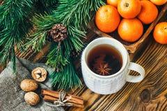 Les branches de sapin de cônes de pin nuts de clémentine de mandarines de symbole de concept de célébration de vacances d'hiver d Image libre de droits