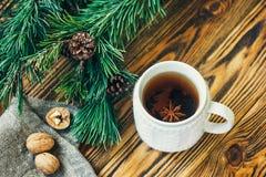 Les branches de sapin de cônes de pin nuts de clémentine de mandarines de symbole de concept de célébration de vacances d'hiver d Photos stock