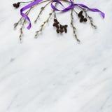 Les branches de saule et d'aulne sur Carrare marbrent contre Photographie stock libre de droits
