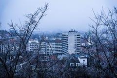 Les branches nues d'hiver donnent sur la ville Photos stock