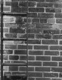 Les briques et l'échelle Image libre de droits