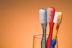 Les brosses à dents d'une famille Images stock