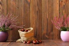 Les bruyères dans des pots et des marrons d'Inde en céramique dans un jute mettent en sac photos libres de droits