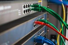 les câbles bleus, rouges et verts de réseau se sont reliés au commutateur Images libres de droits