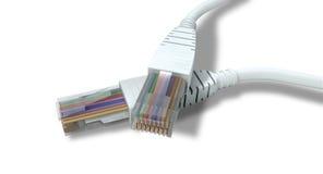 Les câbles d'Ethernet ont débranché des plans rapprochés Image libre de droits