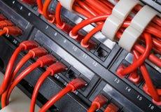 Les câbles de corde de correction rouge se sont reliés au commutateur noir Photo libre de droits