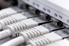 Les câbles LAN Se sont connectés à un commutateur Image stock