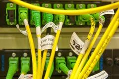 les câbles ont connecté des serveurs de fibre à Image libre de droits