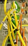 les câbles ont connecté des serveurs de fibre à Image stock