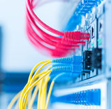 Les câbles optiques de fibre ont connecté à l'les ports optiques photographie stock libre de droits
