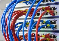 Les câbles optiques de fibre ont connecté à l'les ports optiques photos libres de droits