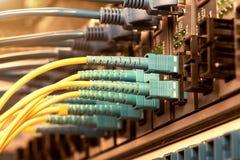 Les câbles optiques de fibre ont connecté à l'les ports optiques photo stock