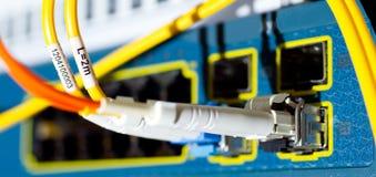 Les câbles optiques de fibre se sont connectés à un commutateur Photo stock
