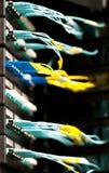 Les câbles optiques se sont connectés au panneau dans la chambre de serveur. Images libres de droits