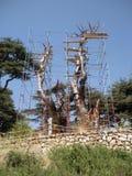 Les cèdres du Liban, place de trinité ou arbre de Lamartine, ont découpé Cedar Wood, forêt des cèdres de Dieu, Liban Photos stock