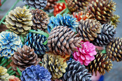 Les cônes colorés de pin peints chez Chiangmai, Thaïlande Image stock