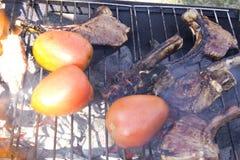 Les côtelettes et les tomates d'agneau sur un charbon de bois grillent Photo stock