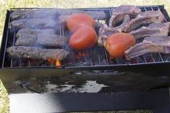 Les côtelettes, les chiches-kebabs et les tomates d'agneau sur un charbon de bois grillent Photos libres de droits