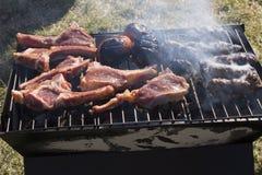 Les côtelettes, les chiches-kebabs et les tomates d'agneau sur un charbon de bois grillent Image stock