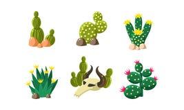 Les cactus et l'ensemble de crâne de buffle, éléments de conception de paysage de désert, les objets occidentaux sauvages dirigen illustration libre de droits