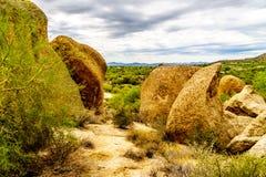 Les cactus, les arbustes et les grands roches et rochers en Arizona abandonnent image libre de droits
