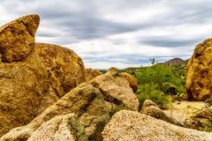 Les cactus, les arbustes et les grands roches et rochers en Arizona abandonnent images stock