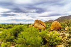 Les cactus, les arbustes et les grands roches et rochers en Arizona abandonnent photo libre de droits