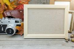 Les cadres vides, appareil-photo classique, jaune sèchent des feuilles Image stock