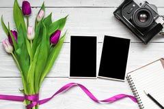 Les cadres vides de photo, appareil-photo de vintage le rétro et la tulipe pourpre fleurissent Image libre de droits