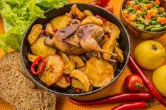 Les cailles ont fait cuire au four dans une casserole avec des pommes de terre et des pommes Sur le fond d'or Vue supérieure Plan Photographie stock