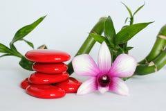 Les cailloux rouges disposés dans le mode de vie de zen avec des orchidées du côté droit du bambou ont tordu tous sur le fond bla Photographie stock libre de droits