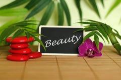 Les cailloux rouges ont arrangé dans le mode de vie de zen avec une orchidée, une bougie allumée, une branche en bambou et le feu Photo stock