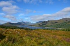 Loch Loyne, Ecosse Images libres de droits