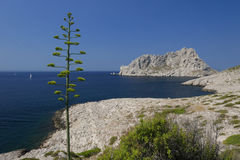 Les Calanques, Marseille Photographie stock