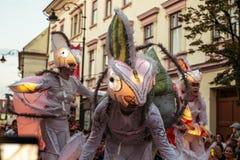 Les caméléons dansent l'équipage d'Allemagne images libres de droits