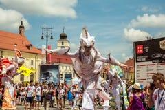 Les caméléons dansent l'équipage d'Allemagne photographie stock libre de droits
