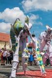 Les caméléons dansent l'équipage d'Allemagne photos libres de droits