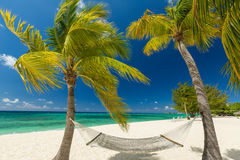 îles Caïmans Photos libres de droits
