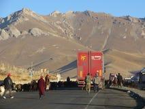 Les camions bloqués par des moutons ont vécu en troupe sur la route de Pamir dans Sary-Tash Images libres de droits