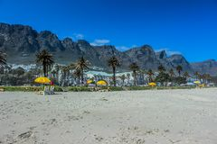 Les camps aboient et douze apôtres à Capetown photographie stock
