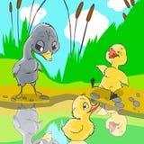 Les canards ont raillé au caneton laid. illustration de vecteur