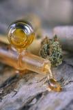 Les cannabis assortis huilent des récipients avec CBD, résine vivante et autre Photographie stock libre de droits