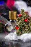 Les cannabis bourgeonnent la tension de marijuana de philtre d'amour avec le dos d'obscurité de fumée Photographie stock