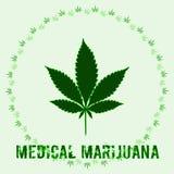 Les cannabis poussent des feuilles en style abstrait et marijuana médicale de mots Photo libre de droits