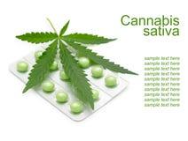 Les cannabis poussent des feuilles et des drogues Image stock