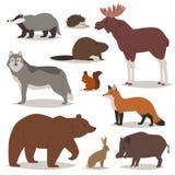 Les caractères animalistic de bande dessinée de vecteur d'animaux de forêt soutiennent le renard et le loup ou le verrat sauvage  Photographie stock