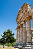 Temple de Paestum - Italie Images libres de droits