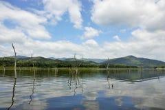 Les carcasses en bois sur l'eau et le ciel bleu reflète la surface Images stock