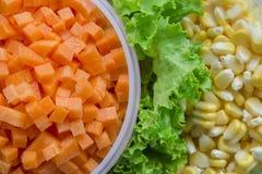 Les carottes Images libres de droits